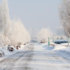 by Vadim Malinovskiy - City,  Street & Park  City Parks
