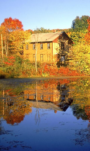 Sunny Autumn Theme