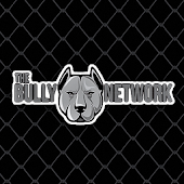 The Bully Network
