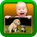 Baby Video - Animals