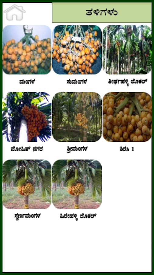 Arecanut Kannada- screenshot