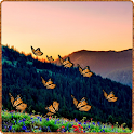 Mountain Butterfly icon