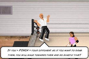 Screenshot of Wrestling Revolution