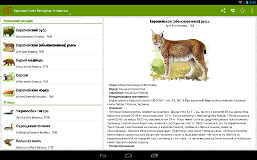 how to download from google play book