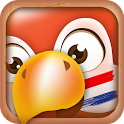 Learn Dutch phrases & words icon