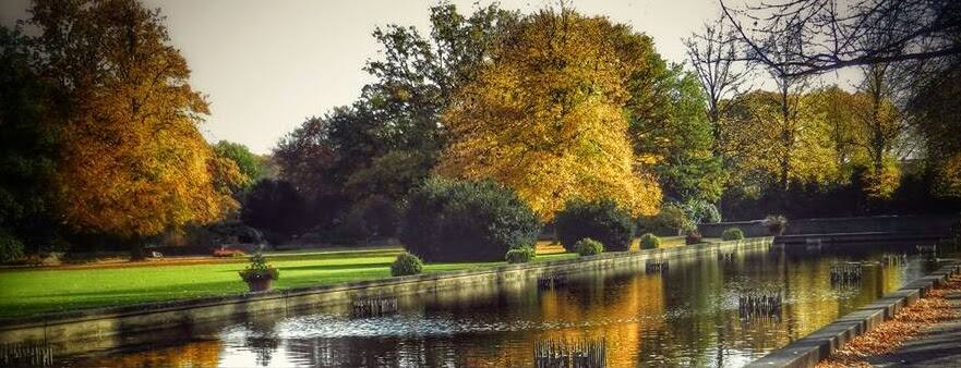 Reflections of Autumn in Lake of Park by Nat Bolfan-Stosic - City,  Street & Park  City Parks ( park, autumn, reflections, trees, lake, fall, color, colorful, nature )