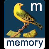 Birds Memory Free