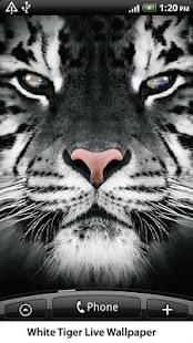 White Tiger Live Wallpaper- screenshot thumbnail