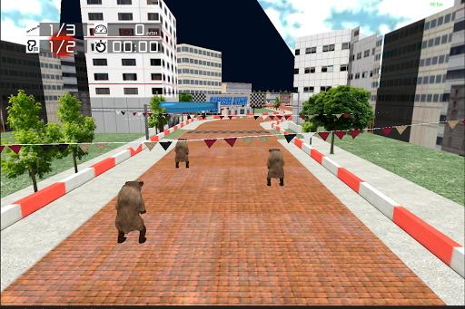 Animal Racing : Bear