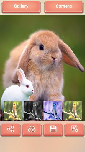 【免費攝影App】複製粘貼照片拼貼-APP點子