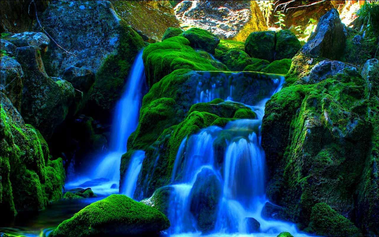 picture of waterfall description 1-16 of over 1,000 results for picture of waterfall those flipping pictures-framed (waterfalls) by those flipping pictures $2499 $ 24 99 prime product description high definition picture photo prints on canvas with vivid color on.