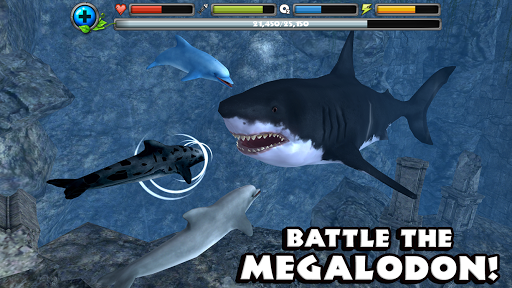 Dolphin Simulator image   12