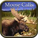 Moose Hunting Calls logo