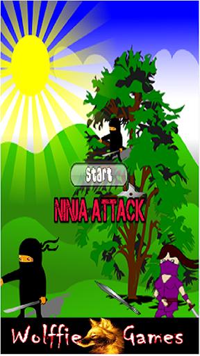 Ninja Assassin Game