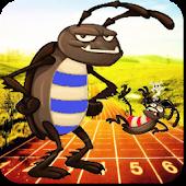 Roach Race