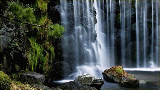 自然圖片|玩個人化App免費|玩APPs