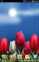 Screenshot of Flowers HD Free Live Wallpaper