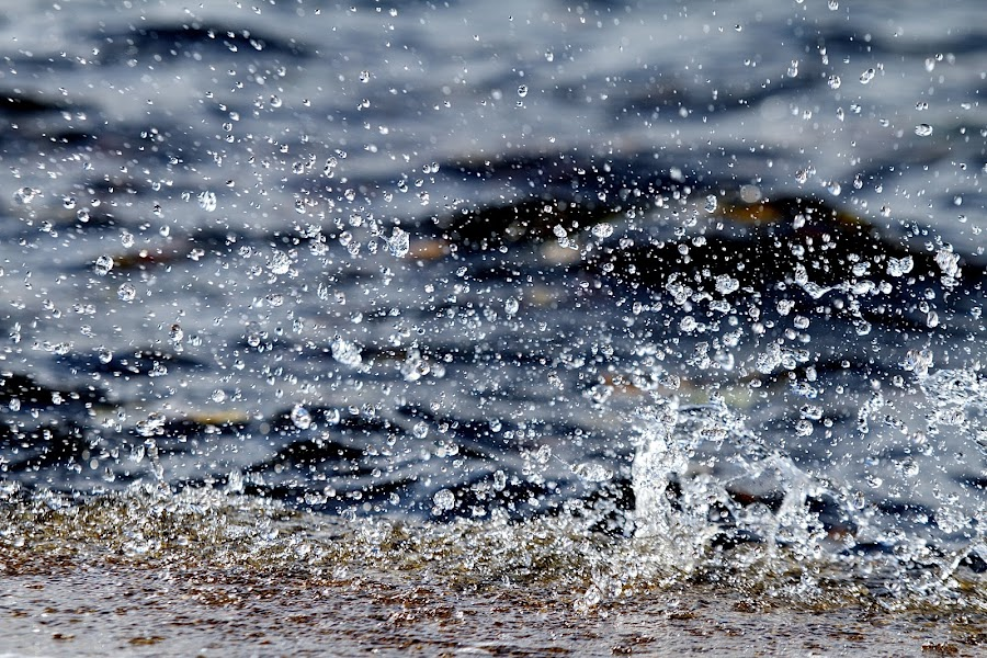 by James Blyth Currie - Nature Up Close Water
