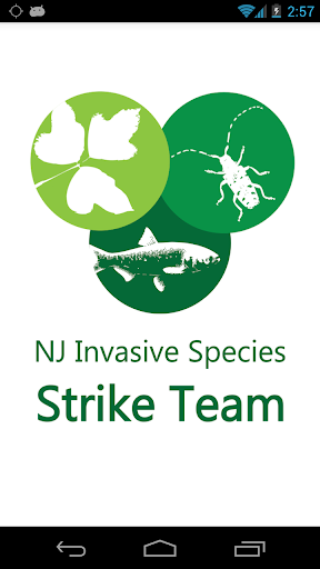 NJ Invasives