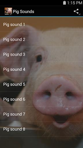 【免費音樂App】Pig Sounds-APP點子