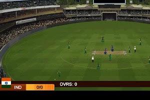 Screenshot of India vs Pakistan 2013