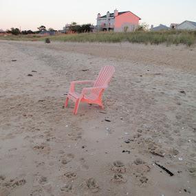 Flamingo chair by Tanya Washburn - Uncategorized All Uncategorized ( sand, chair, flamingo, beach, lonely )