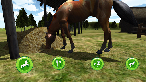 Horse Care 3D