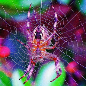 A spider of a different kimd by Catherine Cross - Digital Art Things ( scary, color, beautiful, web, spider, colorful, mood factory, vibrant, happiness, January, moods, emotions, inspiration,  )