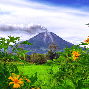 Sinabung Volcano by Kriswanto Ginting's - Landscapes Mountains & Hills