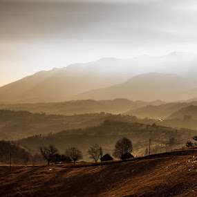 Sinca by Bogdan Melinte - Landscapes Mountains & Hills