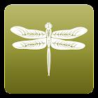 Dreampad Sleep icon