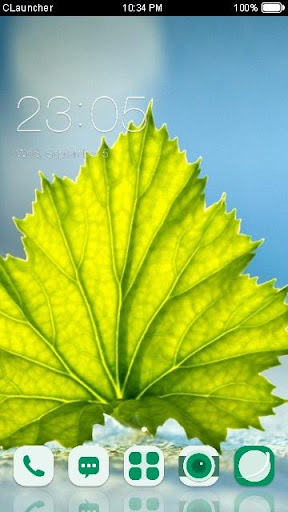免費個人化App|Fresh Leaf C Launcher Theme|阿達玩APP