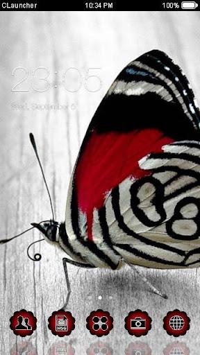 美丽蝴蝶手機主題——暢遊桌面