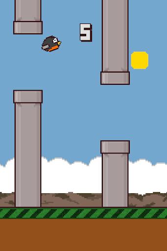 Runnin Robin