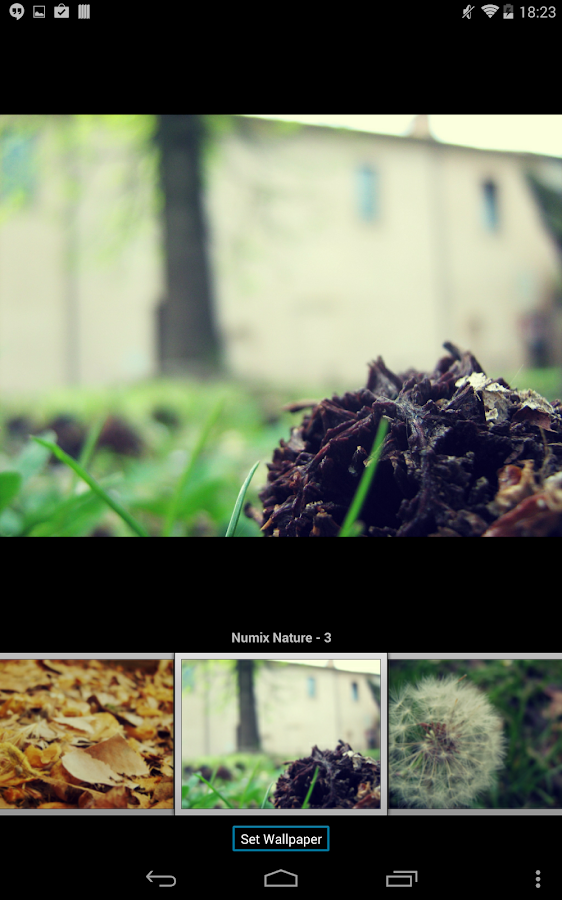 numix wallpapers nature android apps on google play