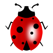 Good luck ladybug