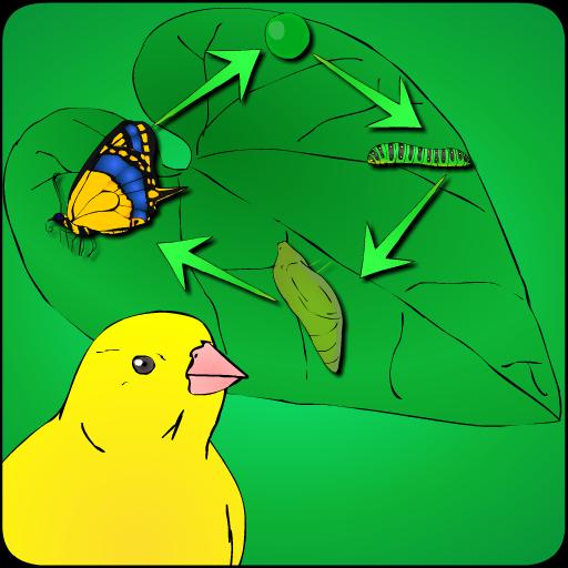 长出了蝴蝶 休閒 App LOGO-APP試玩