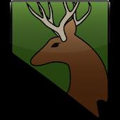 Hunt NV