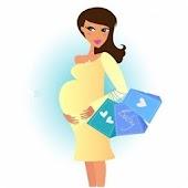 Guia del Embarazo