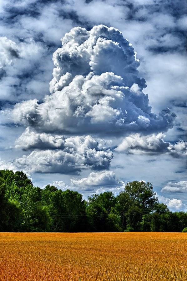 by Manuela Dedić - Landscapes Cloud Formations (  )