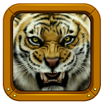 Tiger Photo Puzzles for Kids