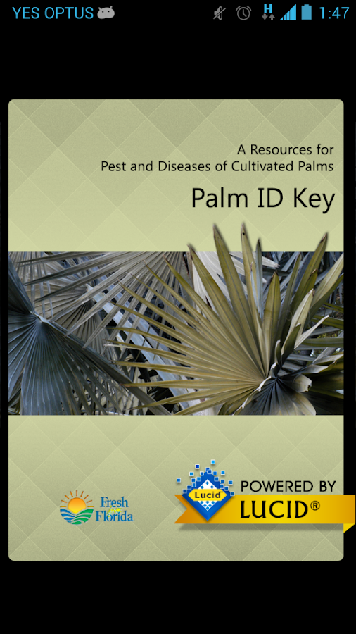Palm ID Key- screenshot