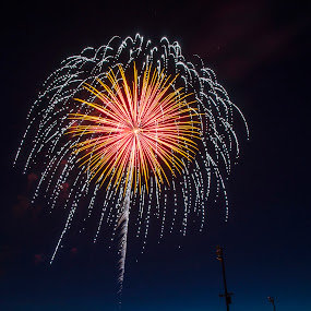 summer rain by Jody Jedlicka - Abstract Fire & Fireworks ( summer, fireworks, night, july 4th, independence day )