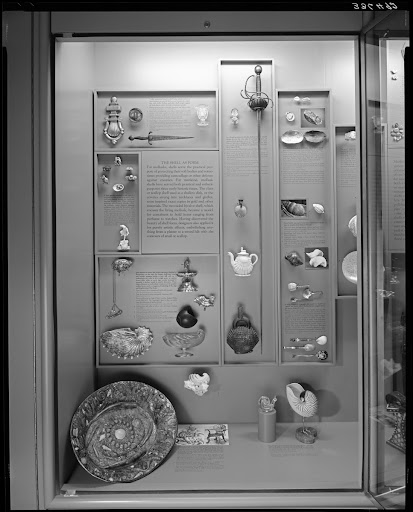 Exhibit case, Mollusks and Mankind, 1975