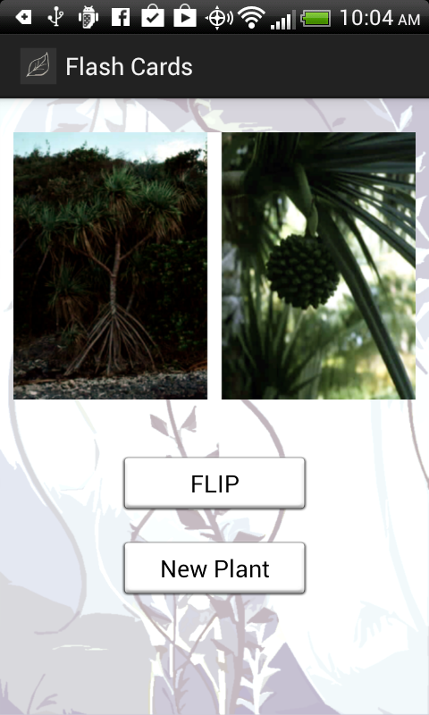 Edible and Poisonous Plants- screenshot