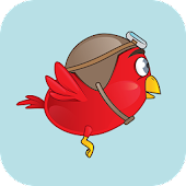 Plumpy Bird