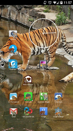Tigers Icon Theme