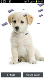 Cute Puppy Live Wallpaper - screenshot thumbnail
