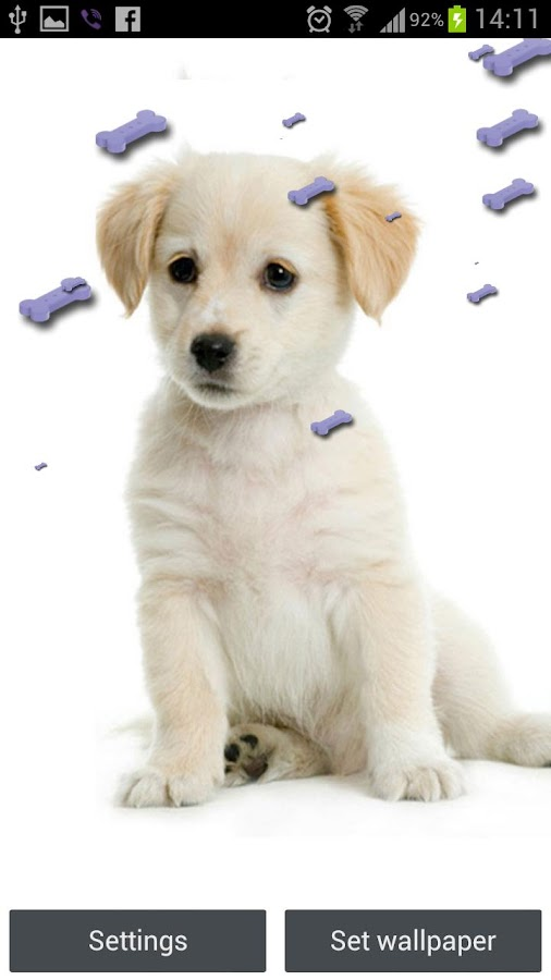 Cute Puppy Live Wallpaper - screenshot
