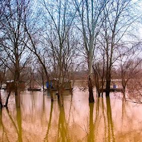 poplava by Zeljko Jelavic - Novices Only Landscapes